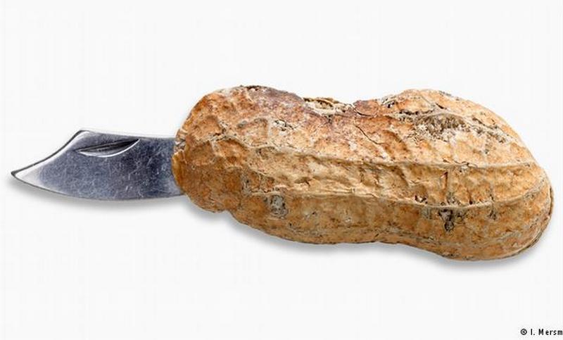 peanut shell-In