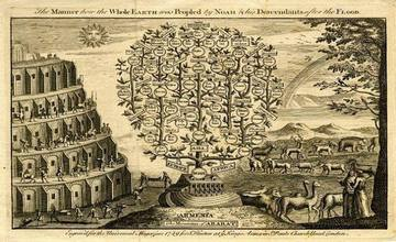 The Genealogical Tree of Noah After The Great Flood