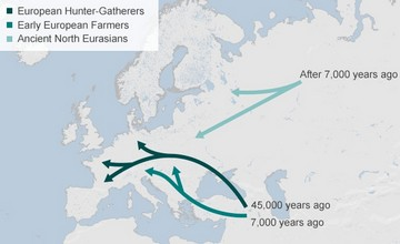 Ancient DNA from the Armenian Highlands Leads to Modern Europe