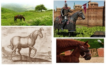 Armenia, A Prominent Land of Horses