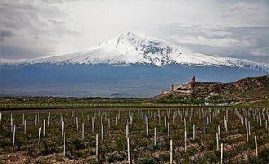 The World of Armenian Brandy
