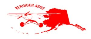 BERINGER AERO Suspends Supplies Of Equipment For Turkish UAVs