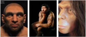 Neanderthals did not disappear - They bided their time