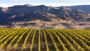 How Armenia's Winemaking Heritage Is Being Rejuvenated